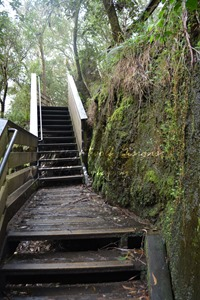 image of wooden stairs. to the right of the image is moss covered rock