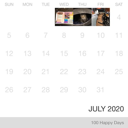 100 Happy Days_July-2020_Collage
